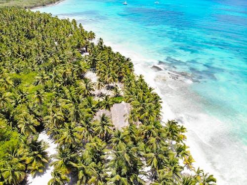 คลังภาพถ่ายฟรี ของ งดงาม, ชายทะเล, ชายฝั่ง, ชายหาด
