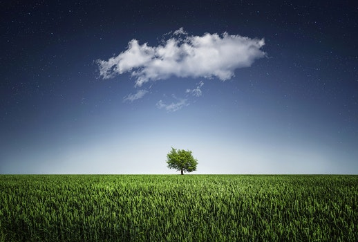 HD wallpaper of nature, sky, night, field