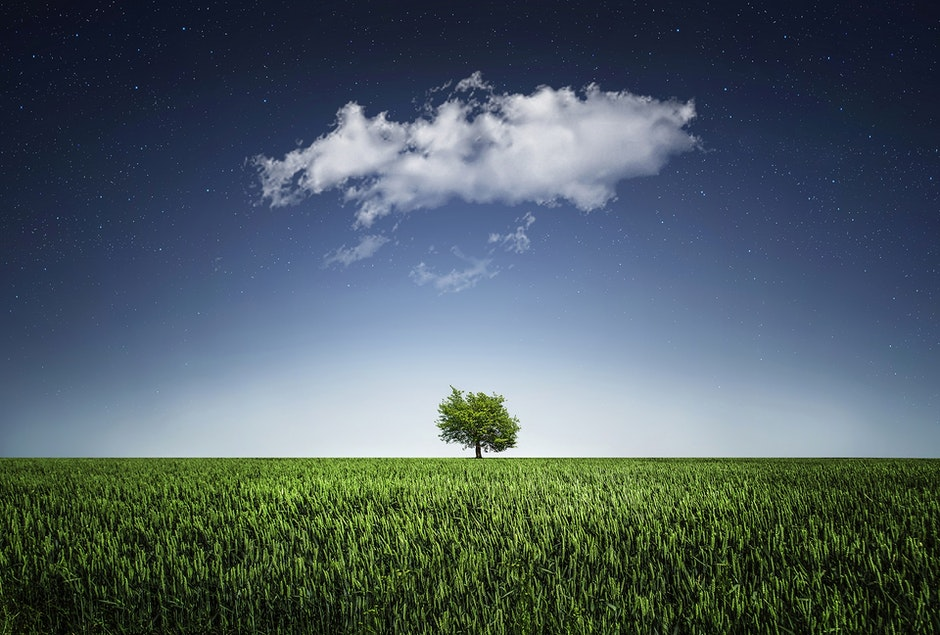 cloud, countryside, field