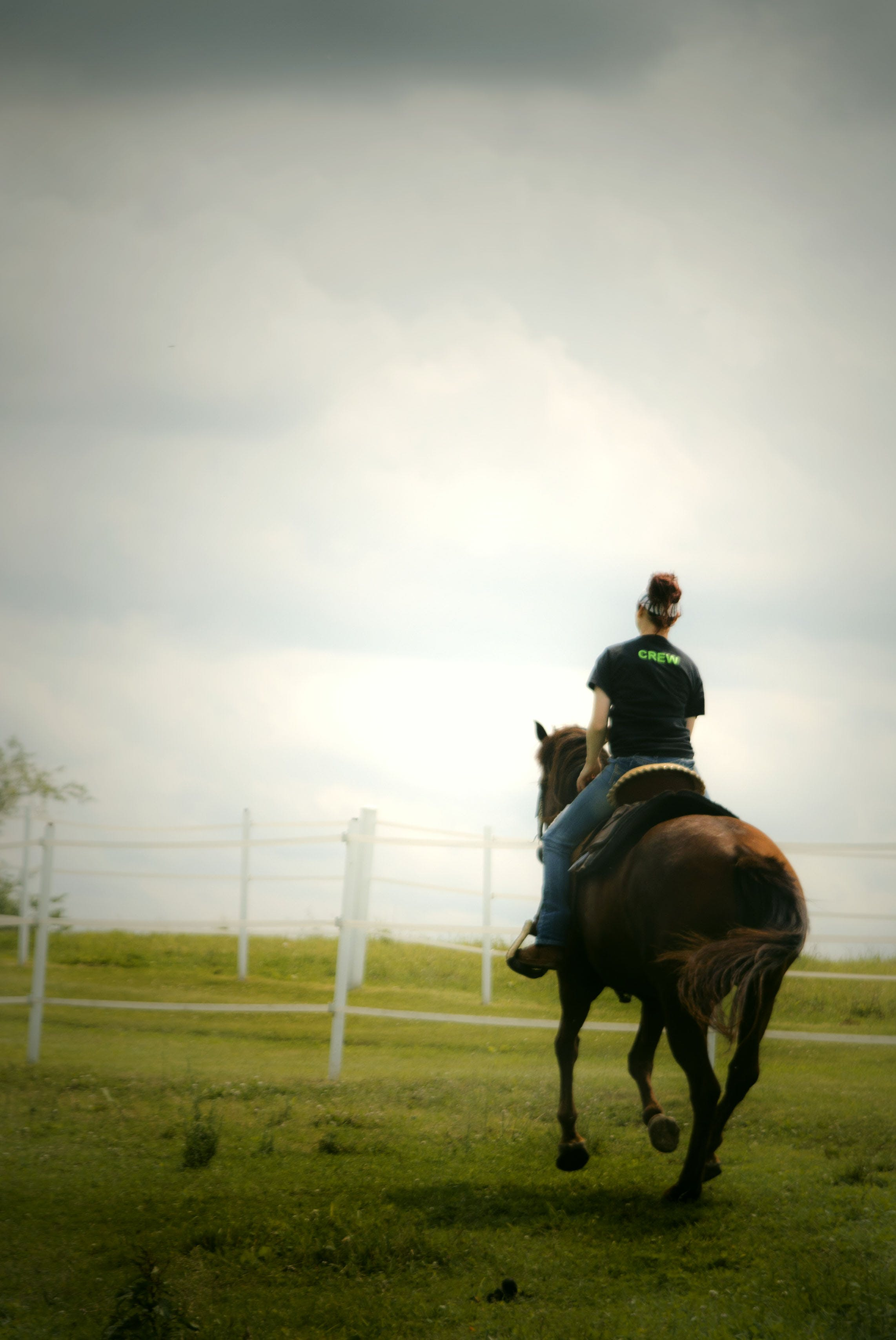 Woman Horse Backriding on Grass Lawn