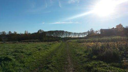 Free stock photo of beautiful day, field, landscape