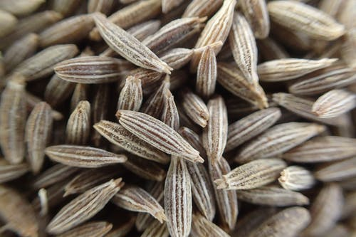 Free stock photo of cumin, cumin seeds, seeds