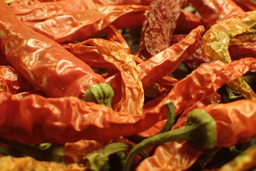Free stock photo of cayenne, chili, chili peppers
