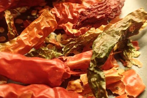 Free stock photo of cayenne, chili, chili peppers