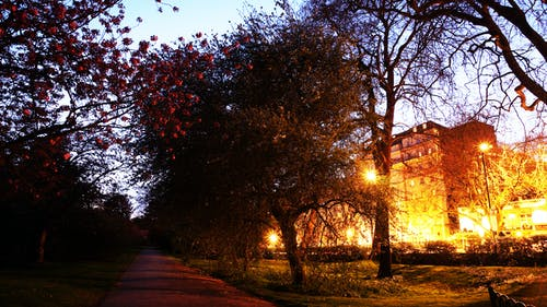 Kostenloses Stock Foto zu hyde park, langzeitbelichtung, licht, london
