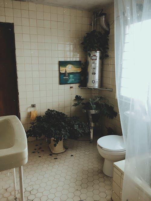 Gratis stockfoto met architectuur, bad, badkamer, badkuip