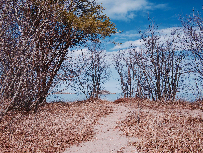 Free stock photo of dirt, island, lake, michigan