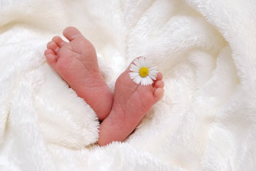 Baby's Feet With White Aster Flower