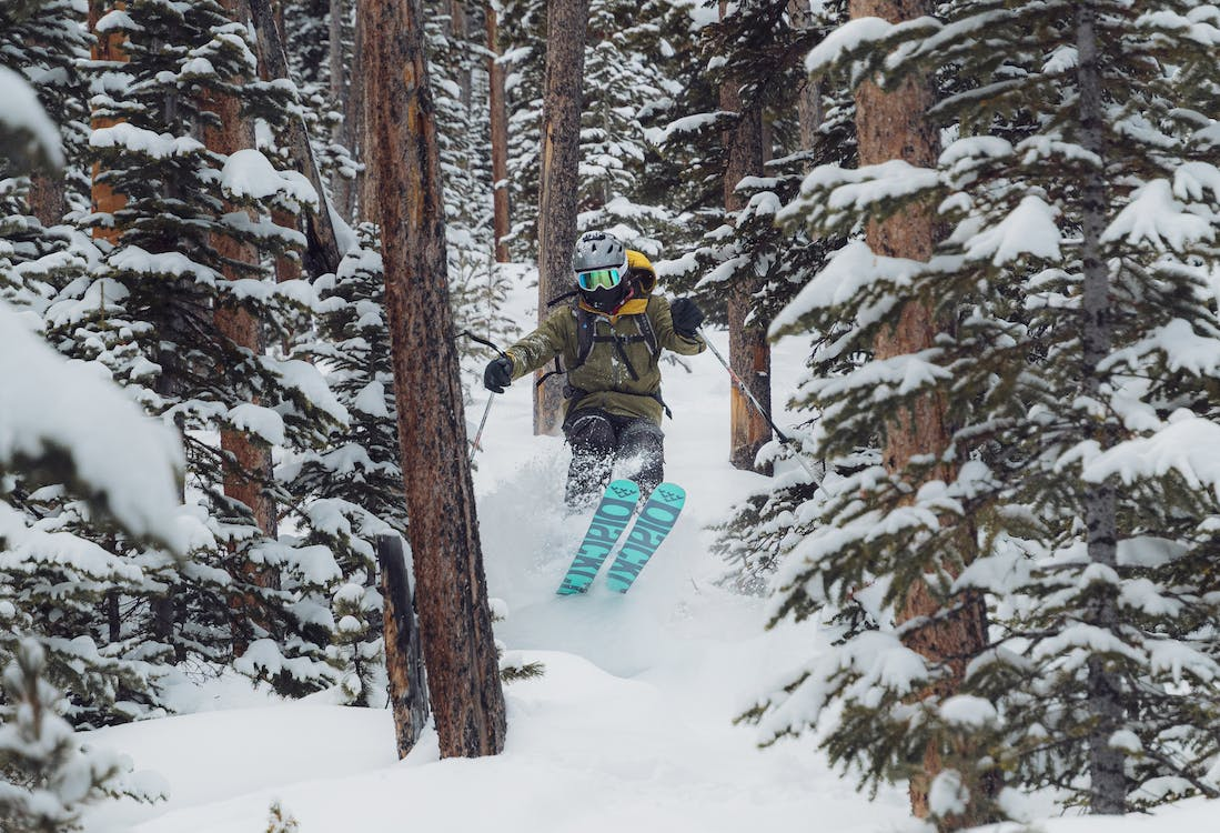 Person Skiing Between Trees