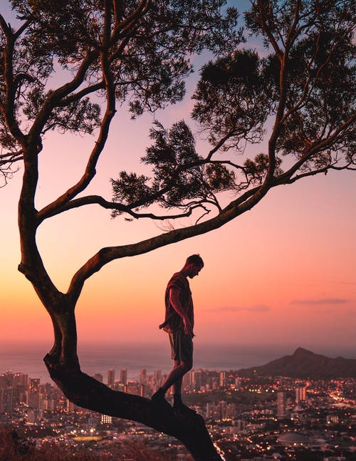 A Photography Of A Man Standing On A Tree