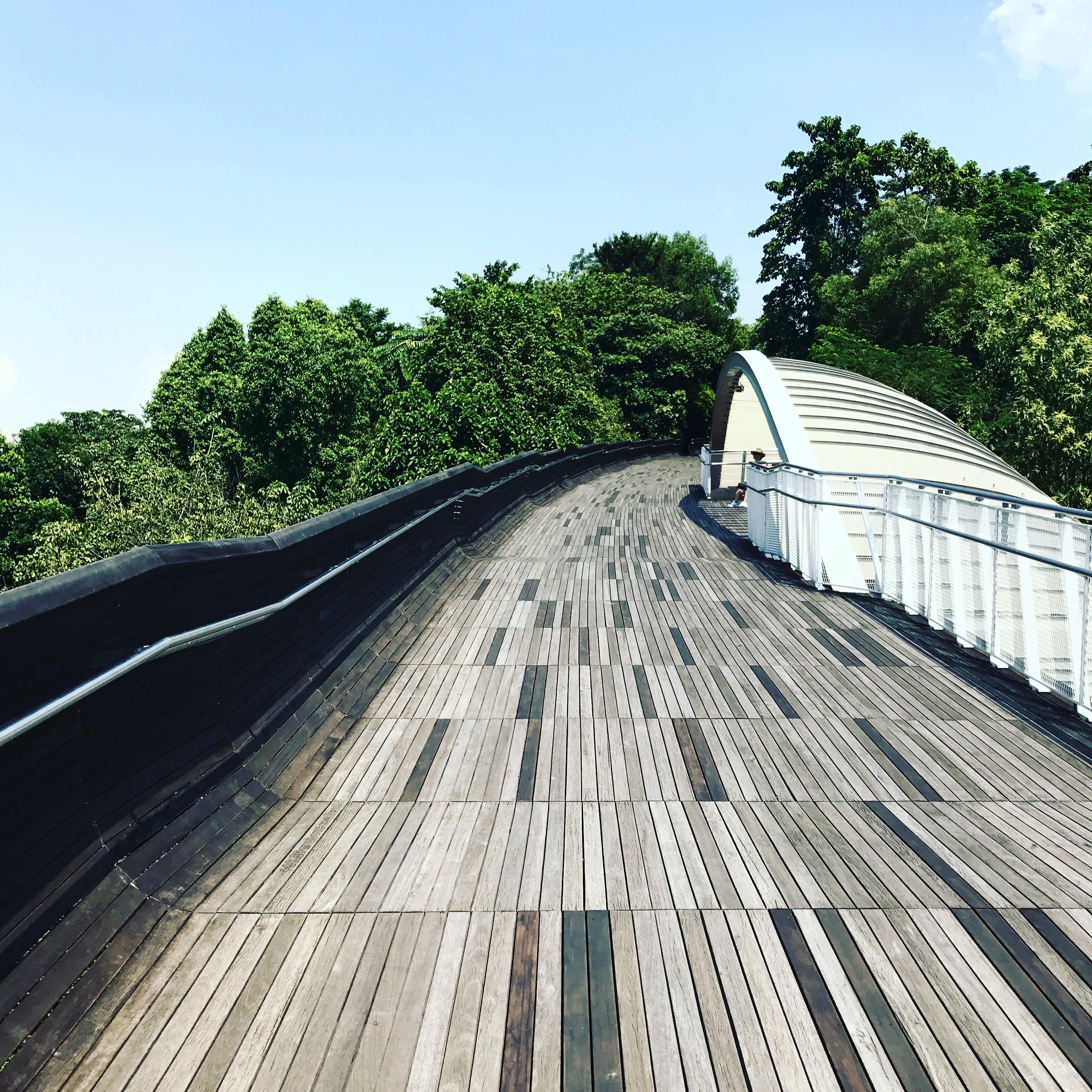 Free stock photo of blue sky, bridge, cloud, footbridge