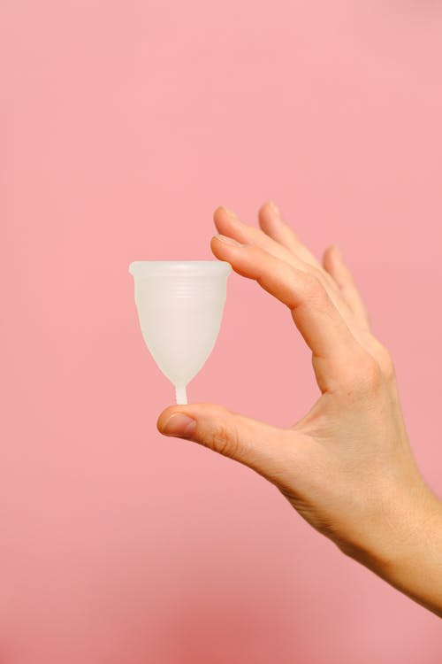 Person Holding White Menstrual Cup