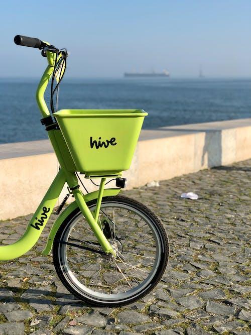 Foto stok gratis latar belakang musim dingin, Lisbon, matahari keemasan, sepeda