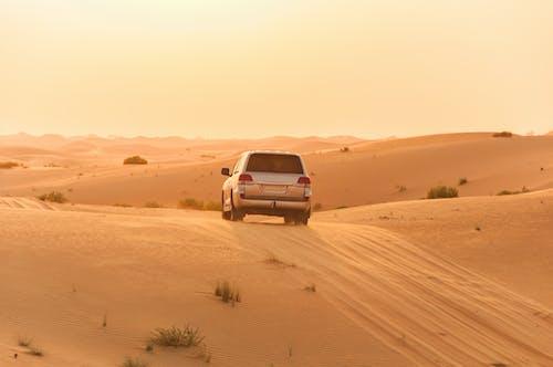 Gratis stockfoto met abu dhabi, Arabisch, auto, autorijden