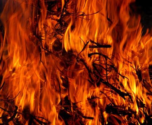 Základová fotografie zdarma na téma hoření, horko, oheň, pálivý