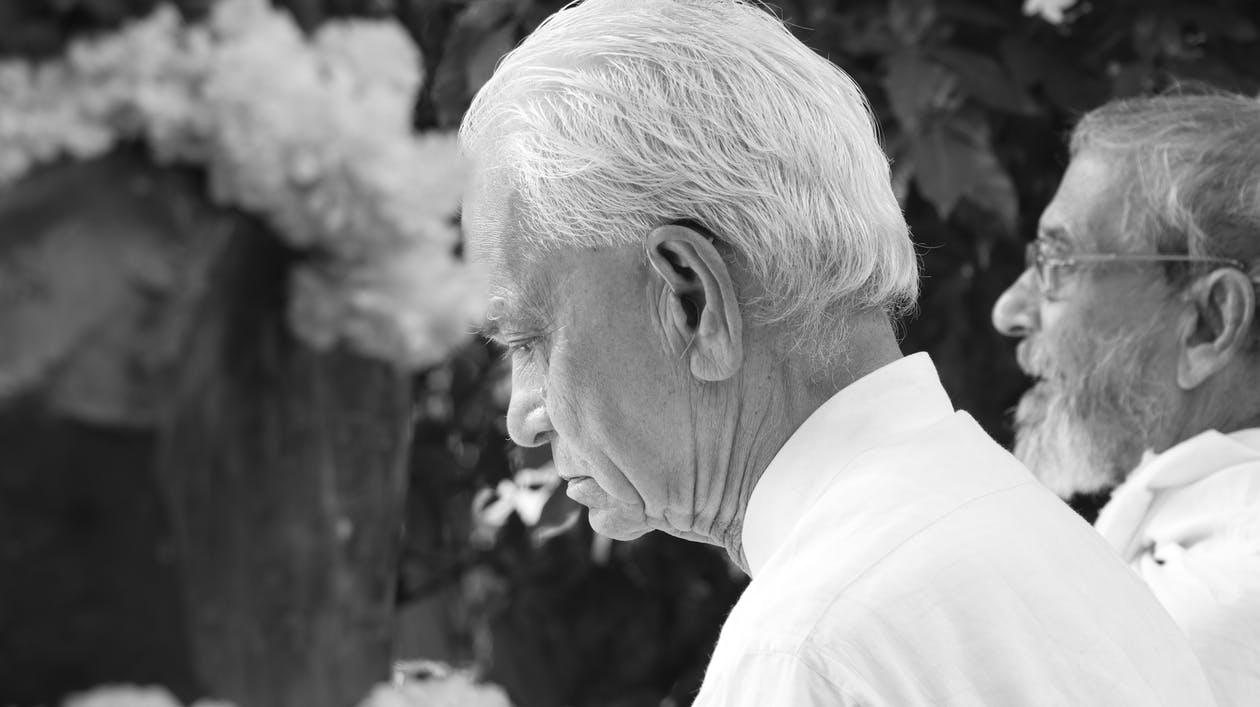 Free stock photo of grandpa, great gandhian, india