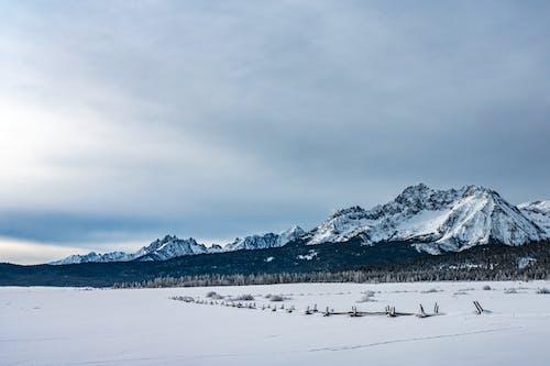 คลังภาพถ่ายฟรี ของ ธารน้ำแข็ง, น้ำค้างแข็ง, น้ำแข็ง, พาโนรามา