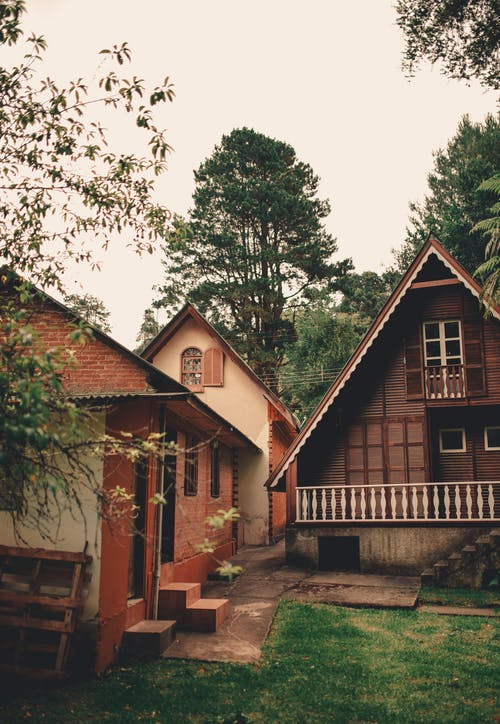 Exterior of village with wooden houses located in green yard with high trees
