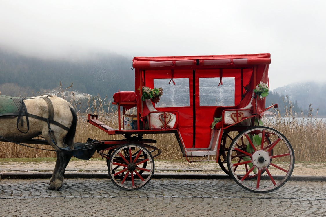Red and White Horse Carriage on Road