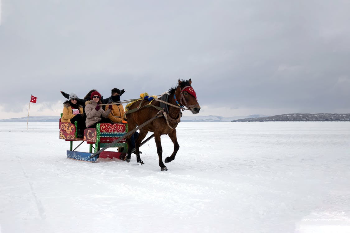 People Riding on Horse on Snow Covered Ground