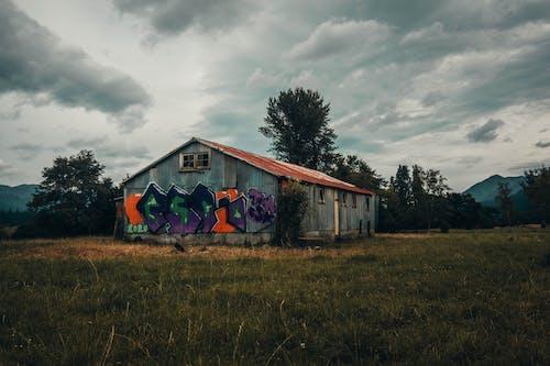 Immagine gratuita di abbandonato, capannone, edificio abbandonato
