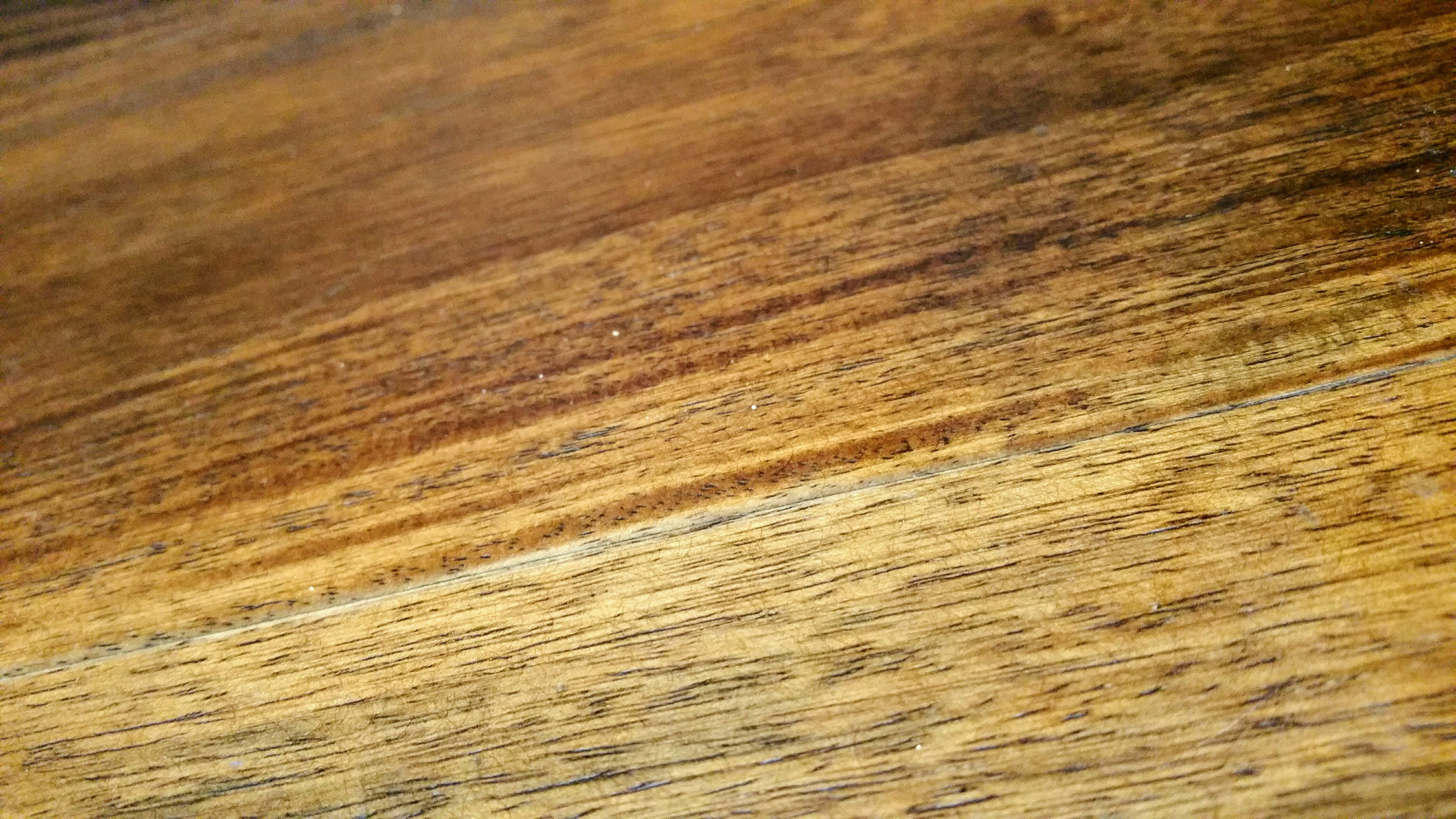 close-up, hardwood, macro