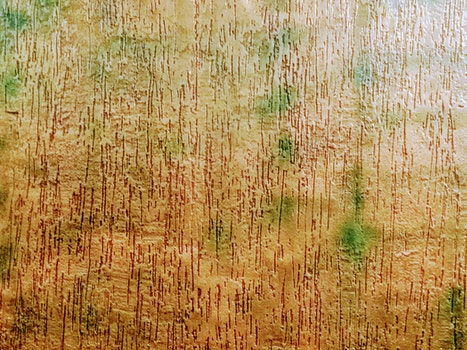 Free stock photo of art, abstract, brown, green