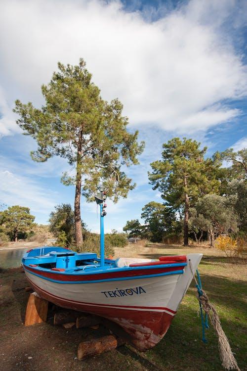 blue, boat, fishing vessel