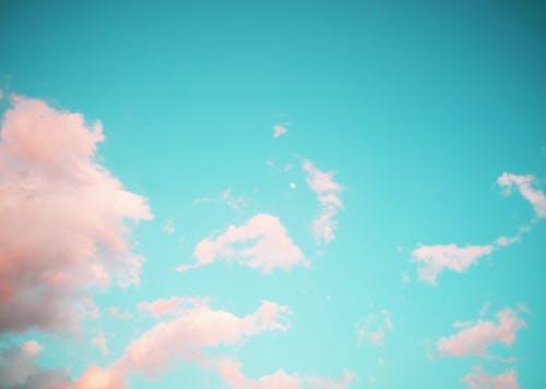 格林斯基, 粉紅雲 的 免費圖庫相片