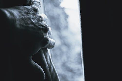Darmowe zdjęcie z galerii z cielisty, ciemny, cień, dorosły