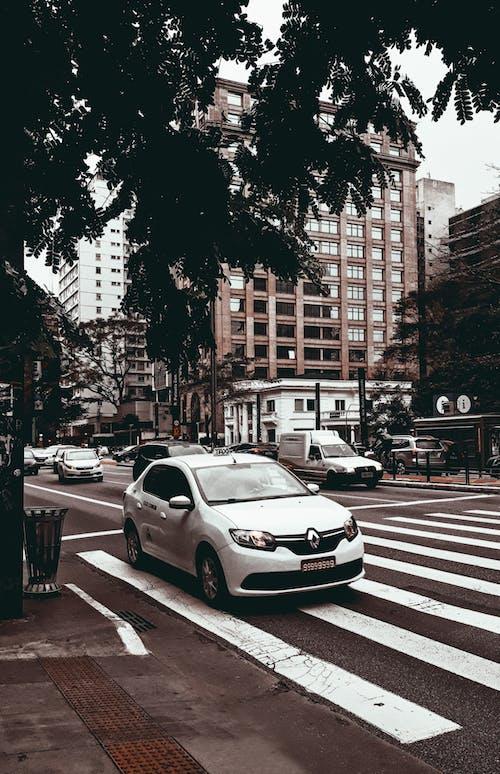 Photo Of White Sedan On Pedestrian Lane