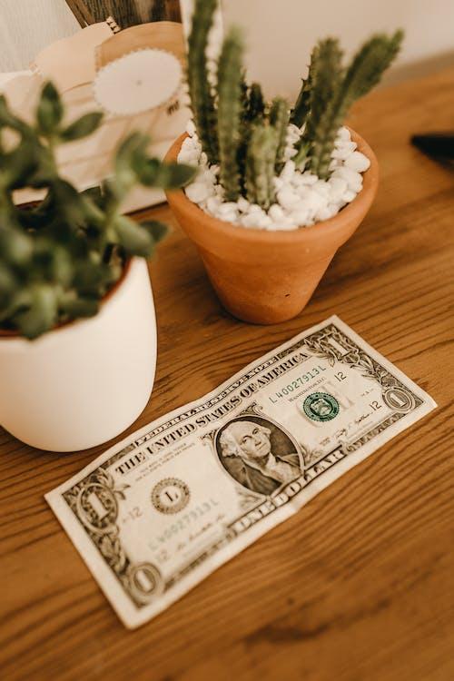 Δωρεάν στοκ φωτογραφιών με αμερικανικό δολάριο, αποταμιεύσεις, αποτοξίνωση, βάθος πεδίου