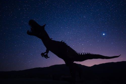 Silueta, De, Dinosaurio, En, Cielo Nocturno