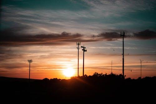 Free stock photo of beach, beautiful, Beautiful sunset, birds