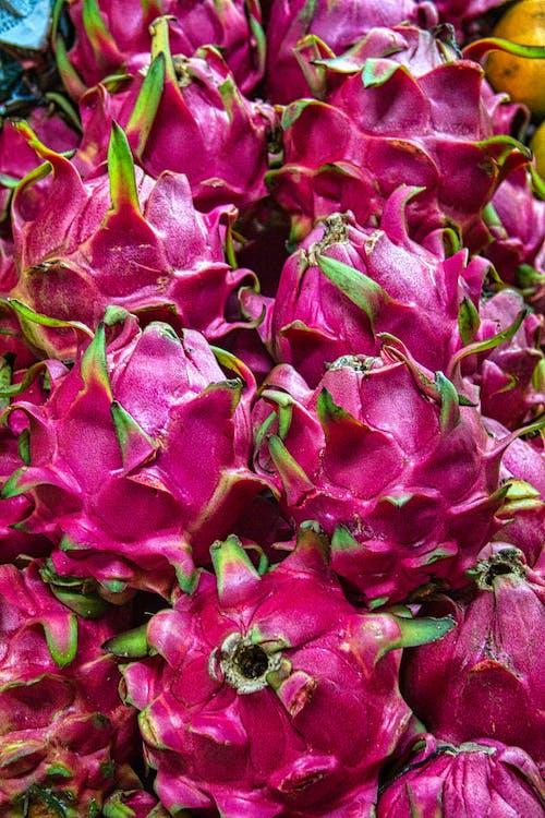 紫色和綠色的花瓣