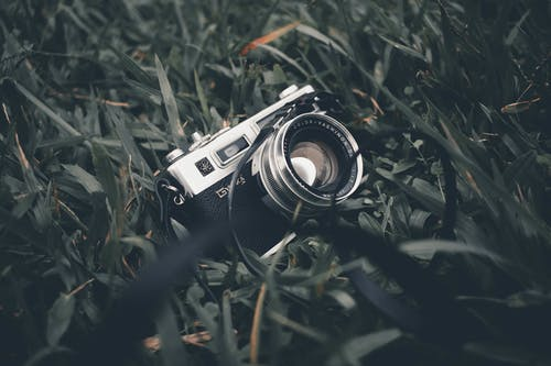 Vintage Camera on Green Grass