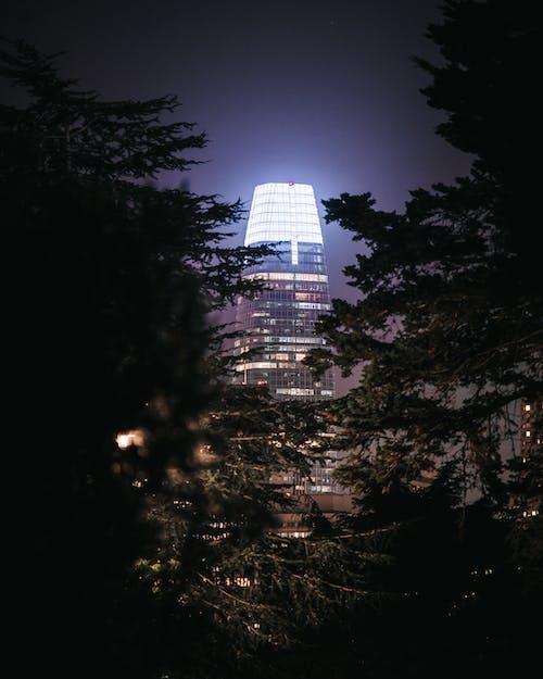 salesforce塔, 地標, 城市的燈光, 塔 的 免費圖庫相片