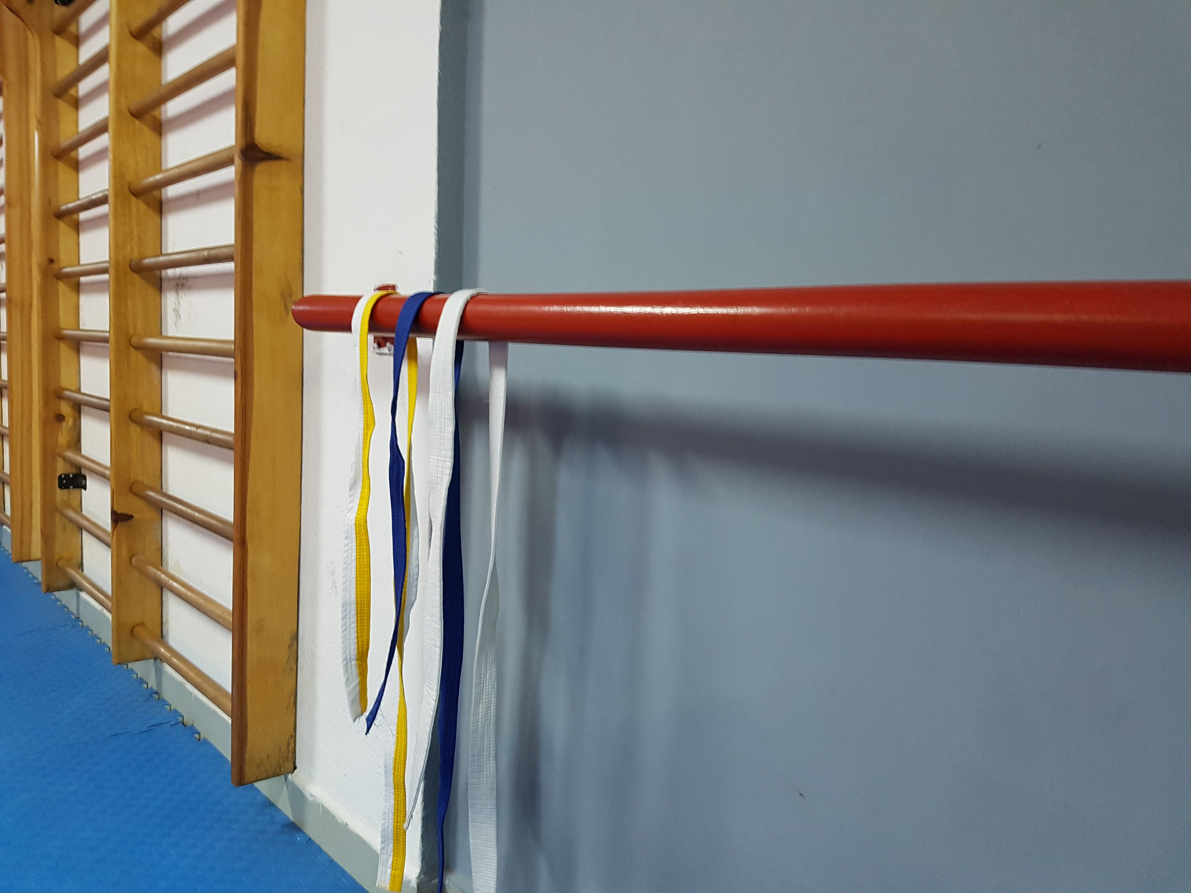 Free stock photo of graduation day taekwondo dojo gym