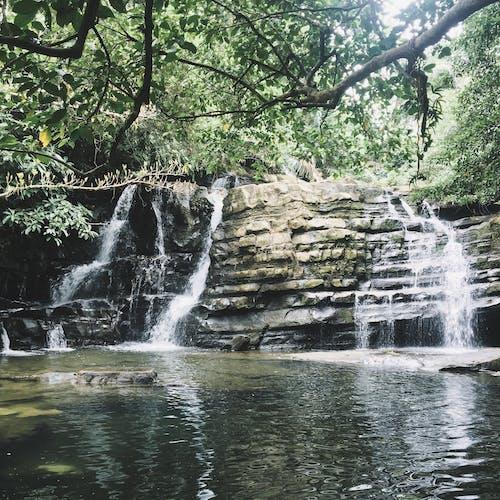 Free stock photo of falls, mothernature, nature