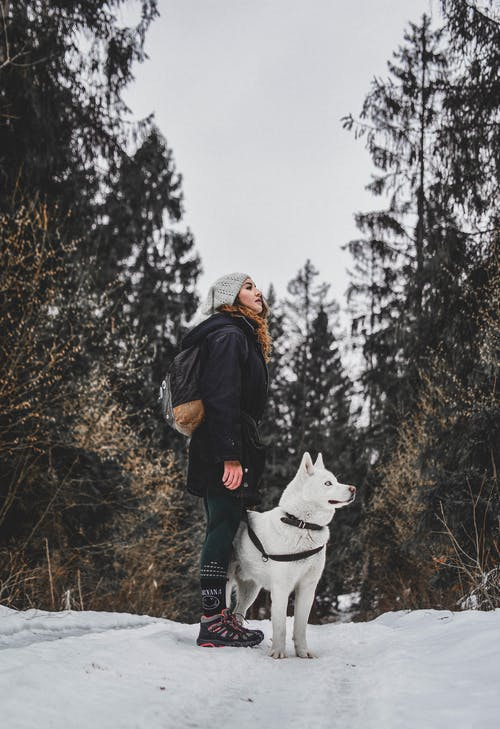 Photo Of Woman Beside White Dog