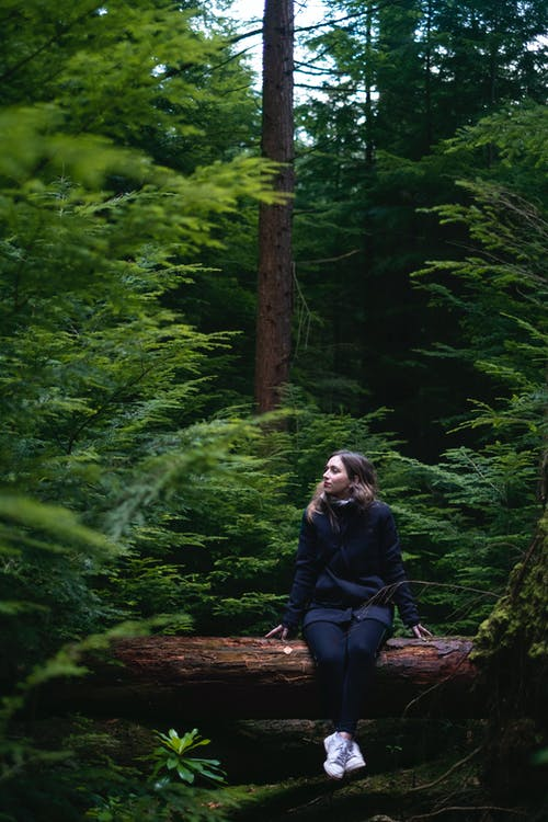 Woman in Black Jacket Sitting on Brown Log in Forest