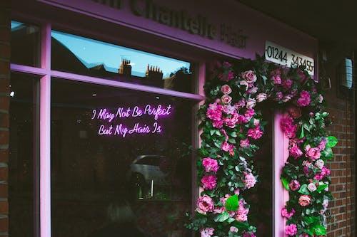 Foto profissional grátis de arranjo de flores, brilhante, buquê, cor
