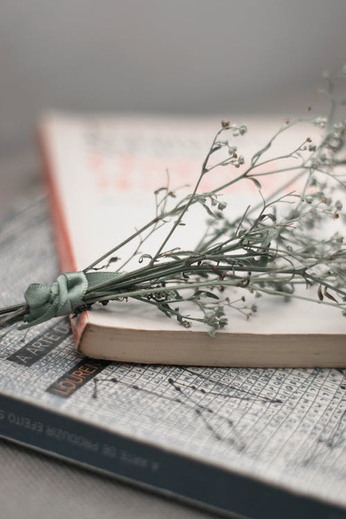 Bunch Of Small Flowers On A Book
