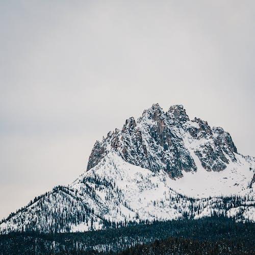 Foto d'estoc gratuïta de alt, boira, constipat, escalar