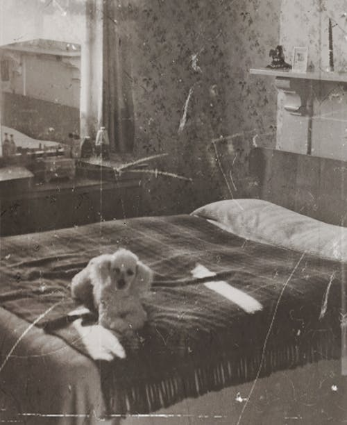 Vintage Photo Of A Dog Lying On The Bed