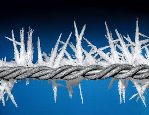 Foto d'estoc gratuïta de congelat, cristall, gel, hivern