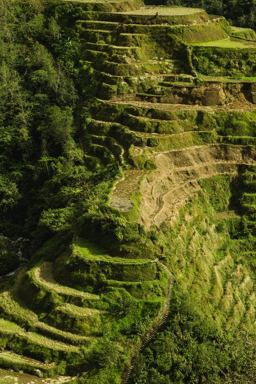 Aerial Photo Of Banaue Rice Terraces