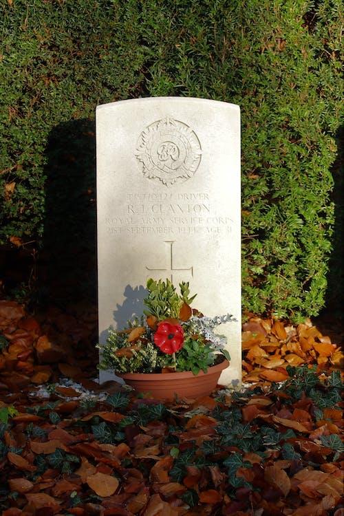 Základová fotografie zdarma na téma válečný hrob