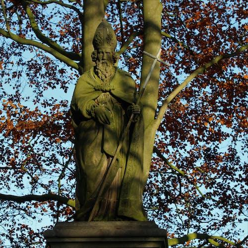 Základová fotografie zdarma na téma socha v lese