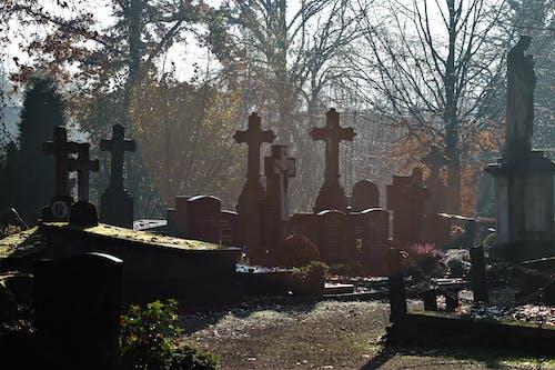 Základová fotografie zdarma na téma hrob